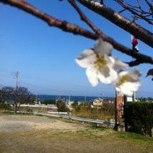 今日は天気に恵まれ。