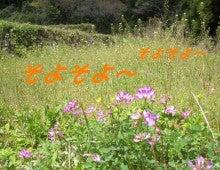 農トレ in 棚田【農業を好きになろう】-1