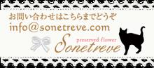 sonetreve~ソンエレーヴ~ プリザーブドフラワー横浜磯子教室