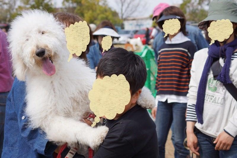 りこ&チャコのブログ-z247