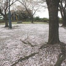 春の終わり・・・