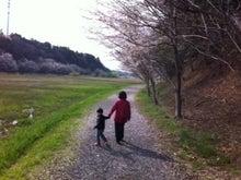 $徒然日記-サクラ散歩2012