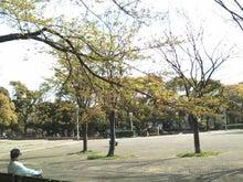 $もとすみ日記-昭和記念公園