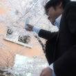 2012年お花見レポ…