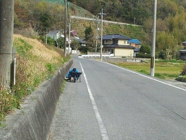 $歩き人ふみの徒歩世界旅行 日本・台湾編-道路端の草取