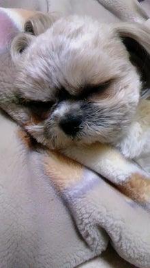 ハウスクリーニング&2つの難病と障害