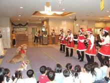 $北海道初のドッグダンス教室 One Step Wan のブログ