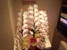 祇園の住人 お水編-IMG_20120420_192947.jpg