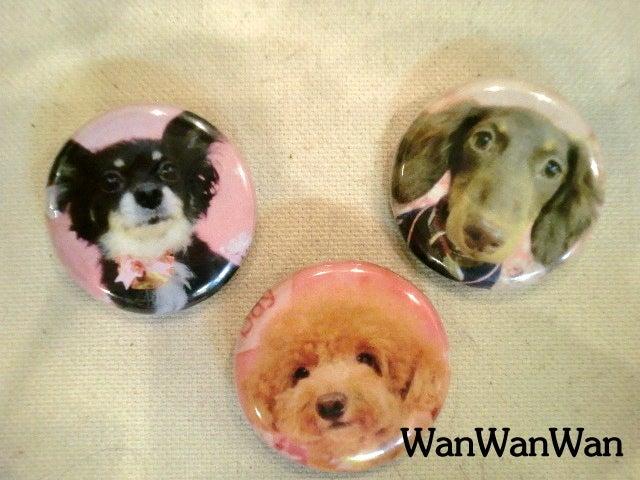 Wan Wan Wanのブログ