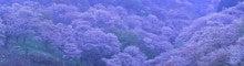 $写真家 谷角 靖オフィシャルブログ「オーロラの降る街 -谷角劇場-」Powered by Ameba オーロラの写真など -yo