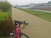 かず&ようくんの自転車生活-DSC_1703.JPG