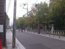 かず&ようくんの自転車生活-DSC_1694.JPG