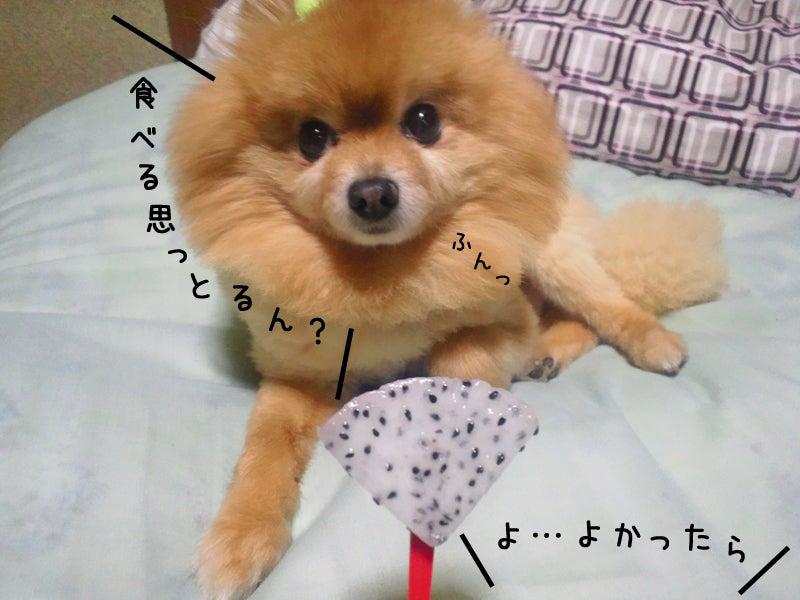 メイプル-ぷる、聞く