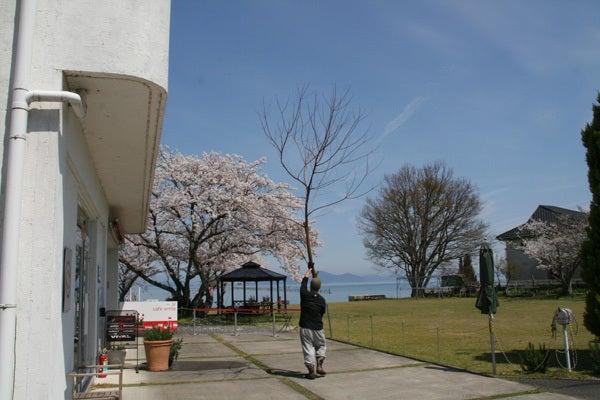 琵琶湖 カフェ:cafe smile / バーガースタンドホーライ HOHRAI