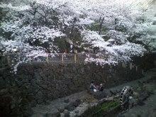 大沢たかしのブログ-sakura