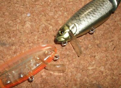 一魚専心-698