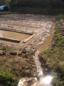 農に学ぶ。-水路に水が…ワクワクです。