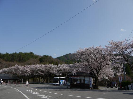 ◆信州の鎌倉・別所温泉「旅の宿 南條」◆ 新米支配人・鈴木隼人の奮闘記!