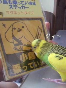 $わがまま王子-2012042515130000.jpg