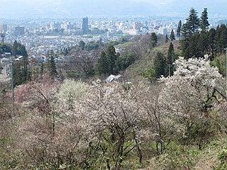 晴れのち曇り時々Ameブロ-花見山から見る福島市街地