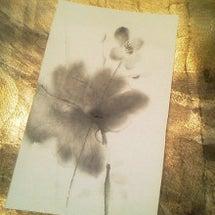 sumie-白雪芥子