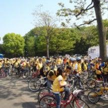 BICYCLE RI…