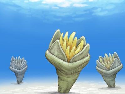 川崎悟司 オフィシャルブログ 古世界の住人 Powered by Ameba-四放サンゴ