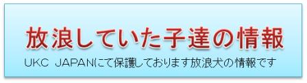 社)UKC JAPAN アニマルレスキュー