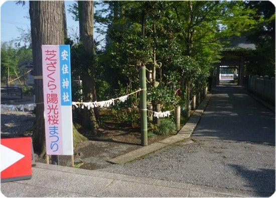 ひばらさんの栃木探訪-ひばらさんの栃木探訪 高根沢
