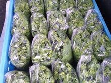 てぃんのブログ-120501菜の花