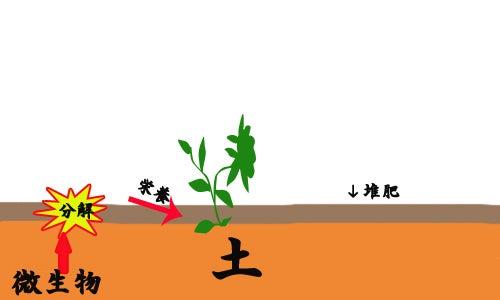 $ベジ夫の農業ブログ