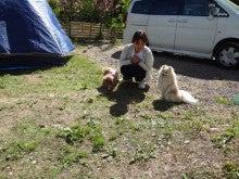 楽園管理人アツシの絵日記-犬連れで、いっしょに宿泊、同伴キャンプ02