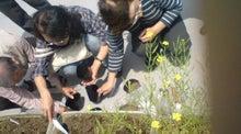 NPO1㎡自然農園の会blog