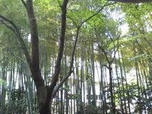 春風秋月のブログ-120508_1358~01.jpg