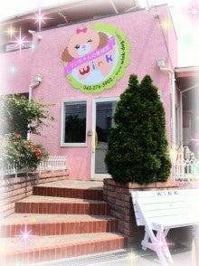 $幕張本郷のトリミングサロン               『ワンちゃんの美容室 Wink(ウィンク)』-ipodfile.jpg
