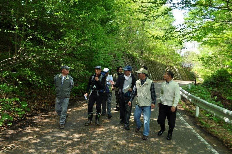 $白神山地ツアーの白神なびスタッフブログ-2012年5月の白神山地「十二湖」の最新情報1