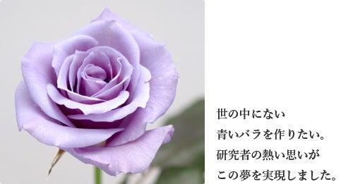 キカイダー01 - アニヲタWiki(仮) - アットウィキ