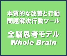 マインドマップ&フォトリーディング楽しく教えてます-全脳思考モデル