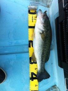亀山湖おりきさわボート-安田さん 43.0cm