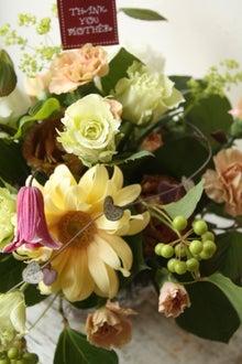 花々詞の花日記