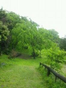 うえき村 DOGRUN-ドッグラン--20120515_130055.jpg
