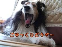 $あやかのブログ