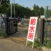 千葉県柏市産の「きぬ…