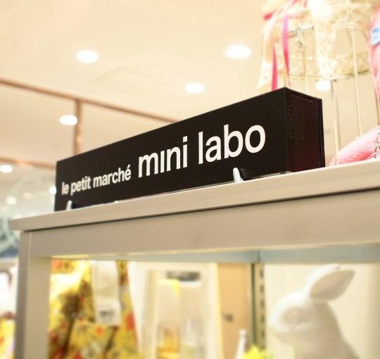 mini-labo 最安値