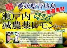 夢とありがとうブログ-減農薬レモンサワーのコピー.jpg