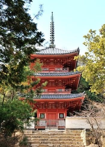 $史跡へ行こう!ブログ-宝福寺三重塔01