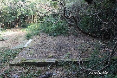 遺産、遺跡を求めて一人旅…時間と金がある限りw-友ヶ島第四砲台
