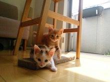 PFL★MIKIのブログ-2012052413190000.jpg