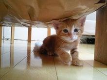 PFL★MIKIのブログ-2012052413210001.jpg