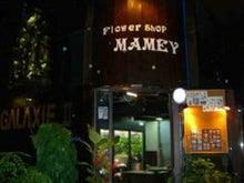 $MAMEYのブログ
